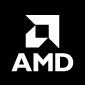 AMD Regular